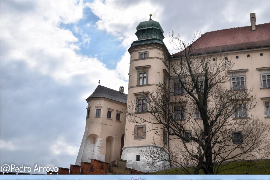 castillo de Wawel. Cracovia
